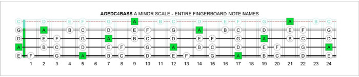 Bass Guitar  6 String  144 Notes