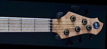 blogozon 8 string guitar low f tuning baf ged octaves c natural octaves major. Black Bedroom Furniture Sets. Home Design Ideas